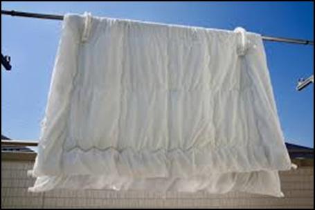 羽毛布団の洗濯方法3選!クリーニングやコインランドリー・自宅を検証5