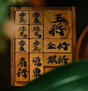 藤井聡太の家族構成と生い立ちは?親の職業と兄弟の学歴も!1